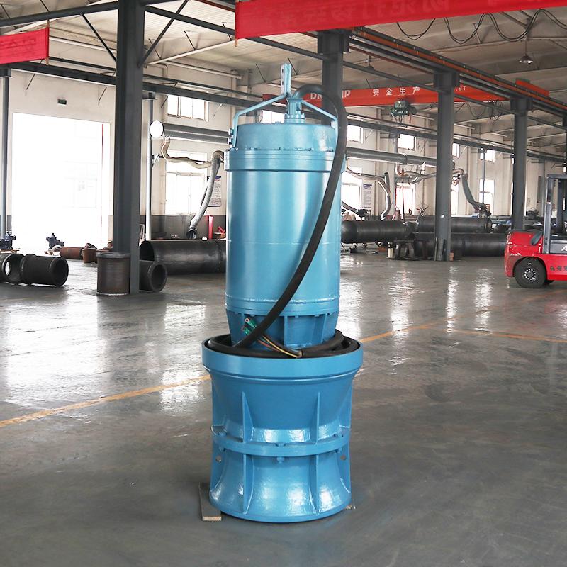 低揚程大功率軸流泵生產廠家  長江流域使用