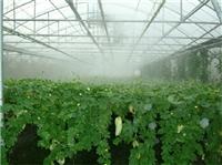 大棚喷雾加湿设备 喷雾降温设备