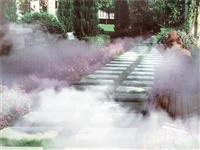 园林景观造雾 人造雾设备 人造雾造景