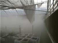 鹏城高压喷雾除尘设备 喷雾除尘 除尘