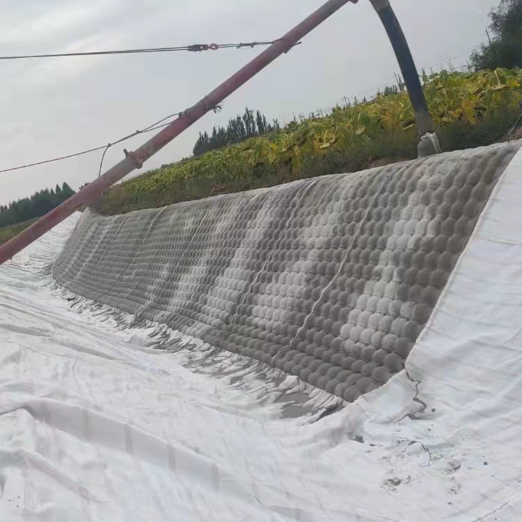 20cm土工模袋 土工模袋廠家 混凝土模袋 路易達模袋