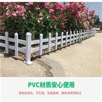 太原草坪护栏塑钢护栏匠心品质衡水精创金属
