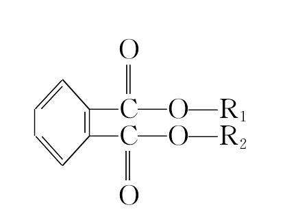邻苯二甲酸酯是什么意思