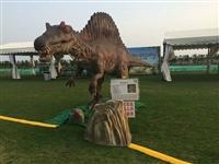 恐龙出租团体展示活动