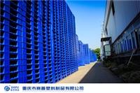隴南塑料棧板廠家塑料卡板廠家直銷