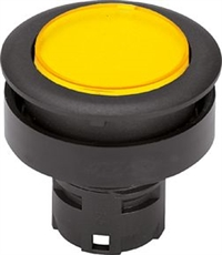 德国RAFI带灯按钮开关型号1.30.090.011