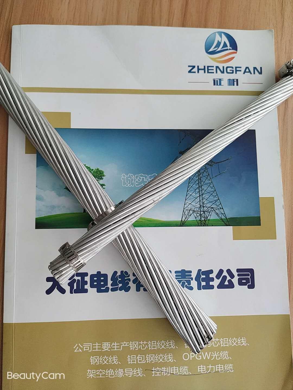 浙江鋼芯鋁絞線 電力專用裸導線