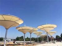 户外景观膜结构雨棚 全国安装 质量保障 价格优惠