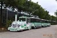 观光小火车   游乐设备小火车  户外亲子游乐非常值得选择