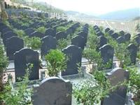 天津永安陵墓地价格