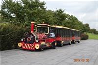 景区小火车  旅游观光火车 20多年生产厂家  售后服务好