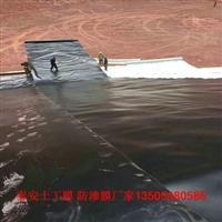 水利渠道HDPE防滲膜品制