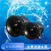 湖南一体化泵闸闸门泵厂家选型