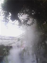 公园人造雾 人造雾设备 人造雾