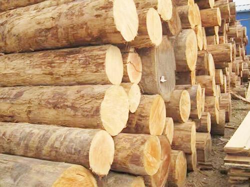 優質木方木材加工廠