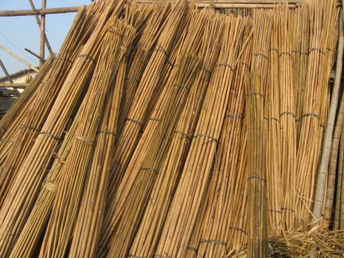 厂家直销竹跳板竹排毛竹片脚手片竹笆片建筑用
