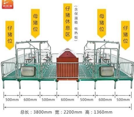 母猪用产床 小猪保育床产保一体产床 热镀锌猪用产床母猪