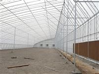 农业大棚骨架建设 农业大棚骨架公司   日光大棚骨架加工