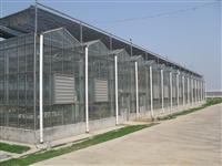 温室大棚造价 温室大棚建设 温室大棚厂家  温室大棚建设