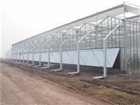 农业温室大棚建设 智能玻璃温室大棚 连栋玻璃温室厂家