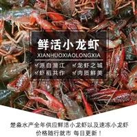 人工养殖小龙虾季节多少钱一斤/批发市场小龙虾价格/虾价行情价格