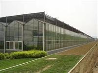 承接温室大棚 质量好的温室大棚 设计温室大棚 建设温室大棚