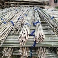 1米-6米山竹自产自销 金竹白竹 搭菜架 果树支撑 蘑菇架子竹杆
