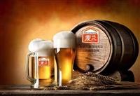 微型啤酒设备之麦汁过滤