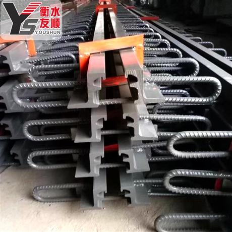 衡水友顺桥梁伸缩缝 GQF-d40伸缩缝 D80型异型钢伸缩缝