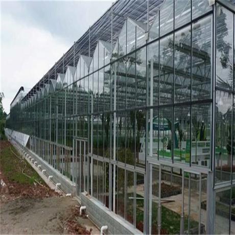 智能温室 智能温室大棚 农业温室