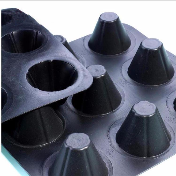 山东厂家直供塑料排水板,疏水板球场排水板