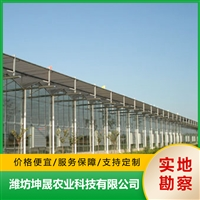 农业温室大棚 建造玻璃温室大棚 搭建蔬菜玻璃温室