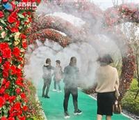 园林景观造雾高压微雾加湿机设备定制