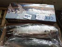 上海三文鱼进货价格,上海整条三文鱼批发,上海三文鱼批发市场