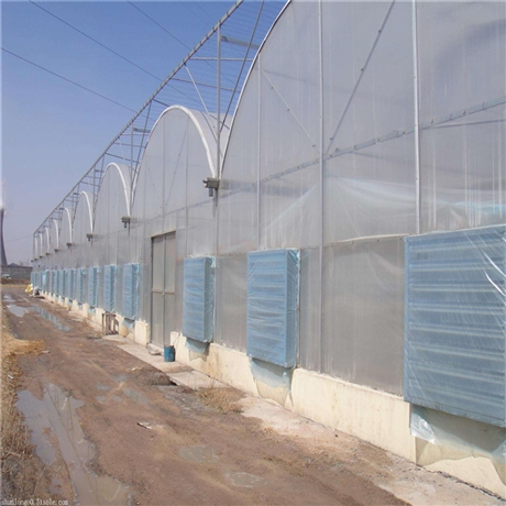 连栋薄膜温室 连栋温室 连栋薄膜大棚 河南温室大棚