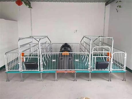 供应河北母猪分娩栏 新型母猪产床