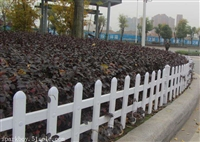 莱芜草坪护栏塑钢护栏匠心品质衡水精创金属