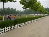 白山草坪护栏塑钢护栏批发衡水精创金属