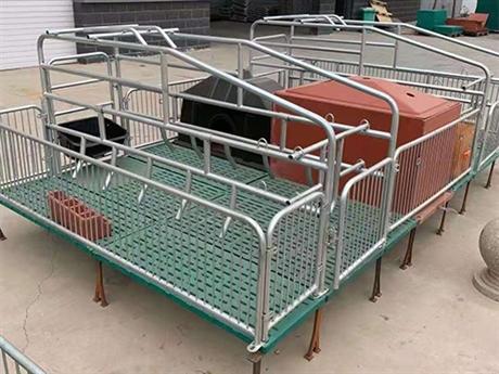 河北母猪产床厂家 母猪产床安装 靖林畜牧设备