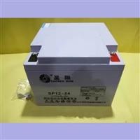 实验室ups电源电池SP12-24A圣阳12V24AH