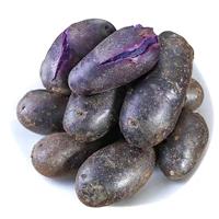高产黑土豆种子,黑土豆种植合作社,大量供应商新鲜黑土豆