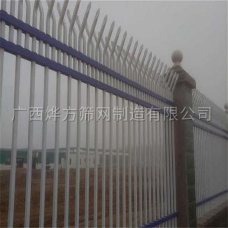 广西烨方   锌铁护栏网