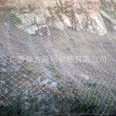 广西烨方  边坡防护网