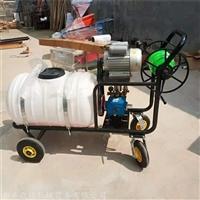 电动喷雾器 果园果树杀虫灭菌打药机