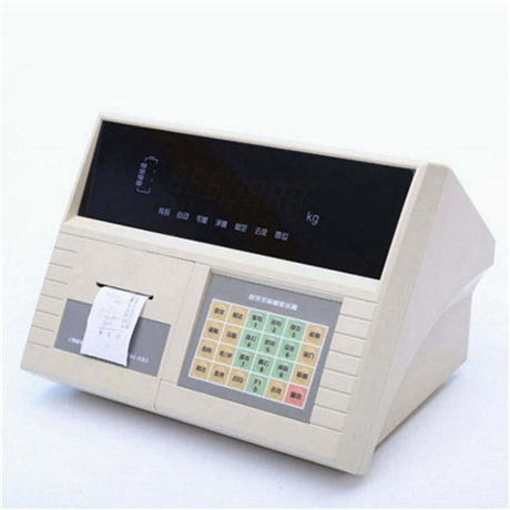 汽车衡显示仪表长沙厂家 耀华DS3/8/10数字式称重仪表供应商