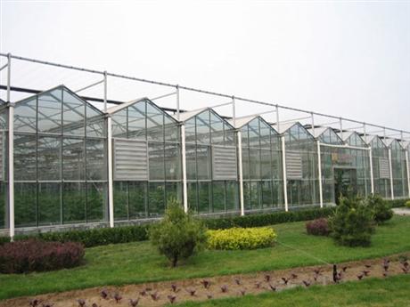 温室大棚,温室工程,玻璃温室建造,连栋薄膜温室