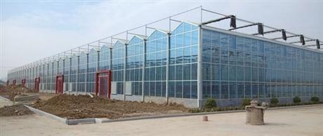 玻璃温室设计建造造价