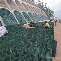 舟山生态袋 迈迪 丙纶植草生态袋-规格