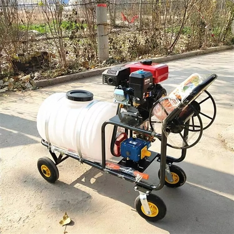 160L汽油喷雾器 宏晨汽油喷雾消毒机 猪场喷雾消毒机