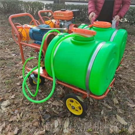 猪场喷雾机 养殖场杀菌消毒机 宏晨蔬菜地灭虫打药机